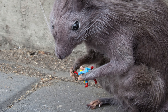 Little People - Rat