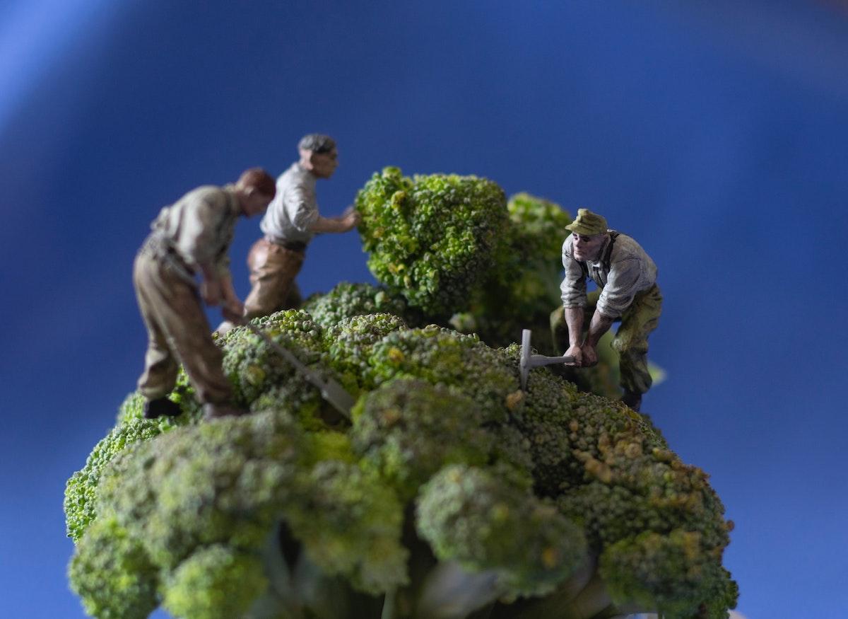 Little figurines mining a piece of broccoli