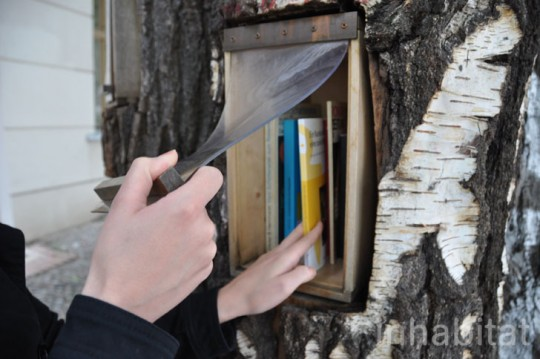 Tree That Grows Books