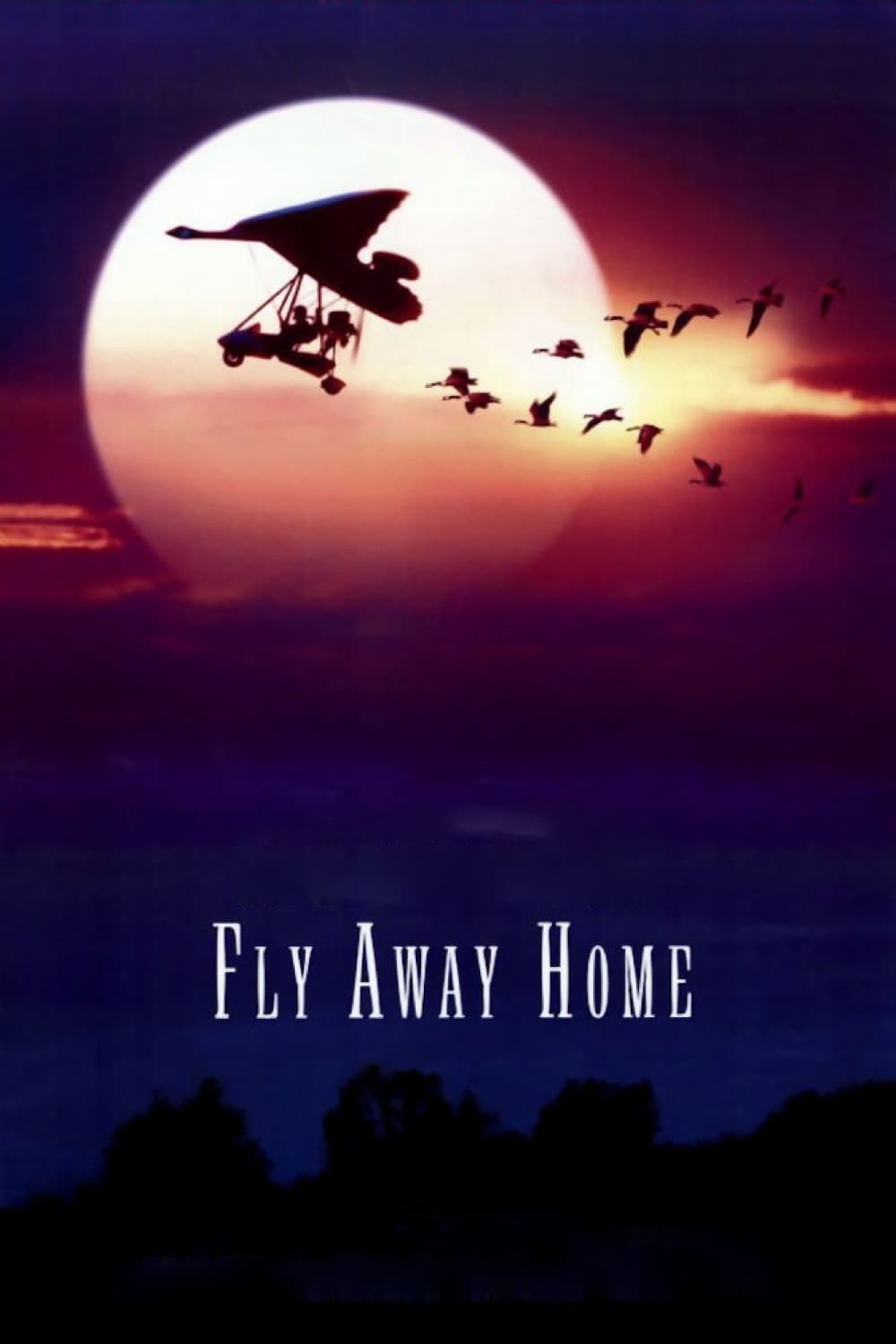 "Poster for the movie ""Fly Away Home"""
