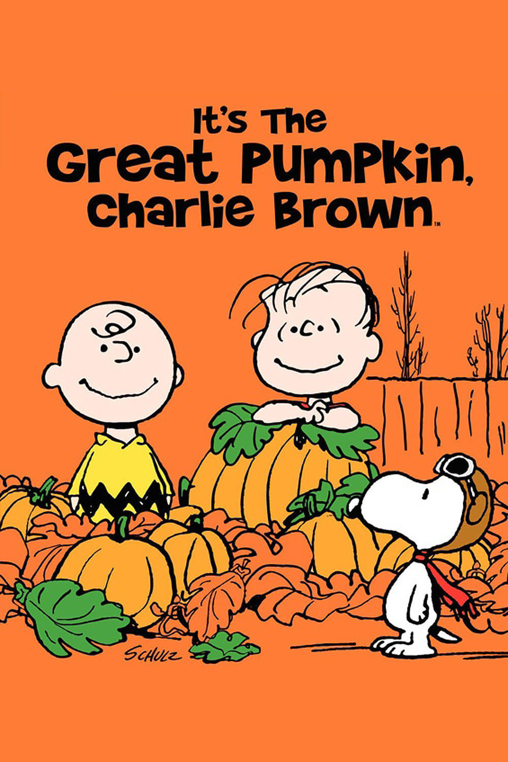 """Poster for the movie """"It's the Great Pumpkin, Charlie Brown"""""""