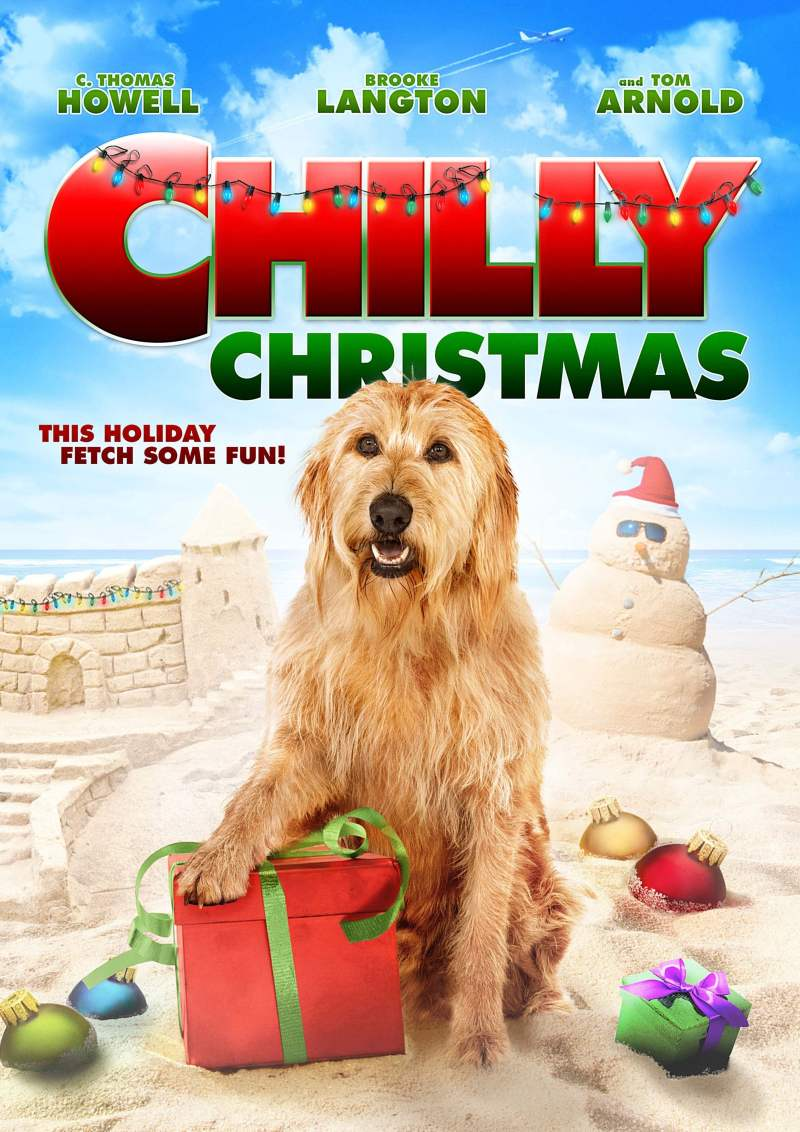 "Poster for the movie ""Chilly Christmas"""