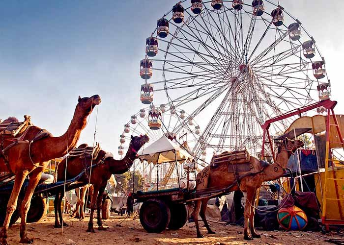 Image result for fair in rajasthan