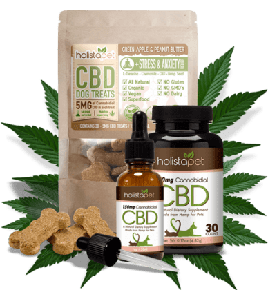 cbd oil and Galliprant for dogs with arthritis