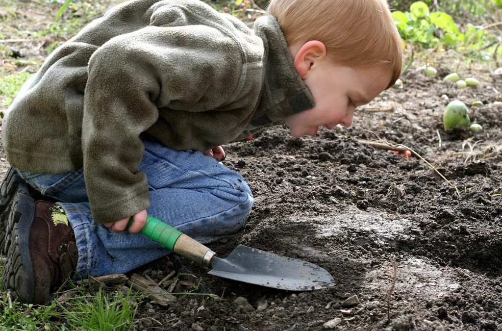 Antidepressant Microbes In Soil: How Dirt Makes You Happy