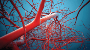 homocysteine and cholesterol