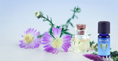 1 new what are essential oils The vaccine industry's biggest threat? Wild Oregano