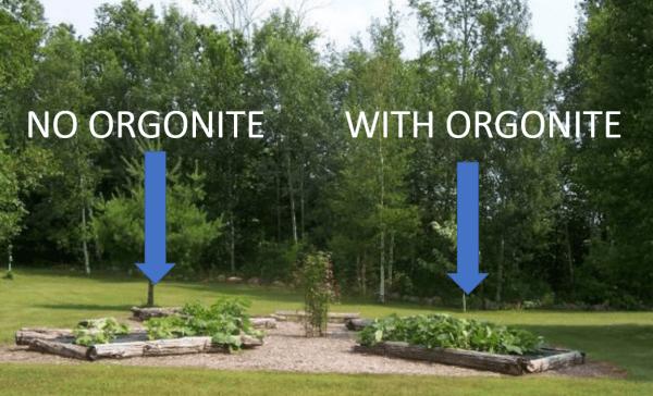 gardening with orgonite Orgonite Total Family Defense System