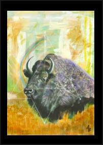 Buffalo Star