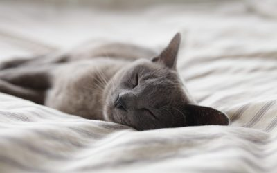 Easy ways to get more sleep