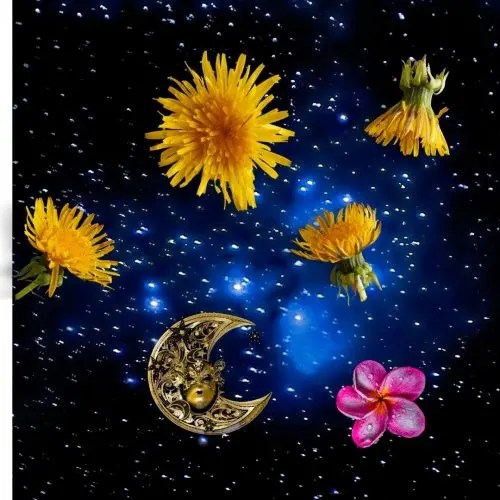 Holistic Detox Online Class 7-9:30pm BST 8 June 2020 Plant Allies & Cosmic Helpers and Guides