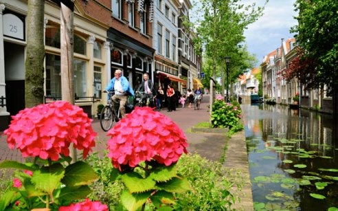Image result for delft