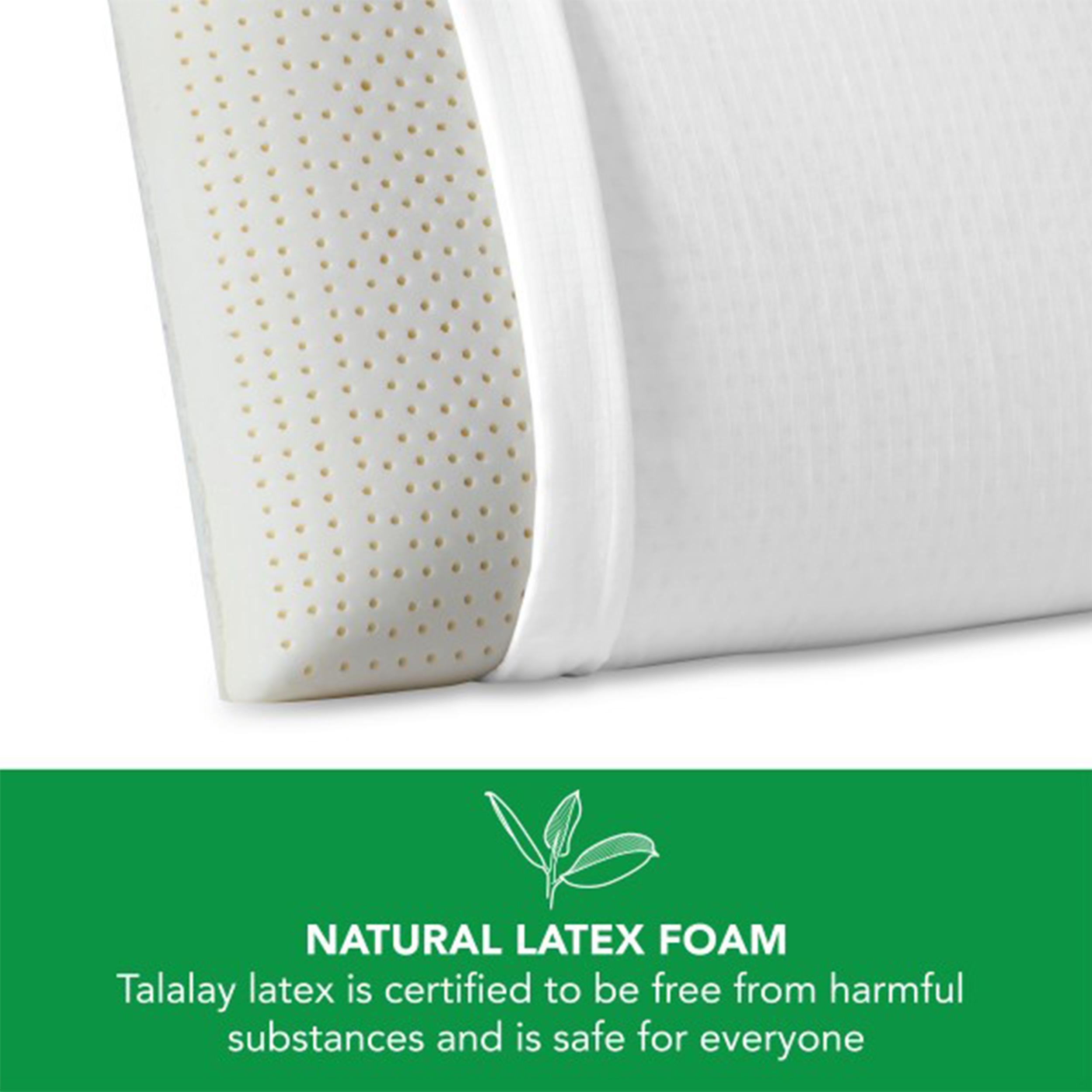 beautyrest latex foam pillow with