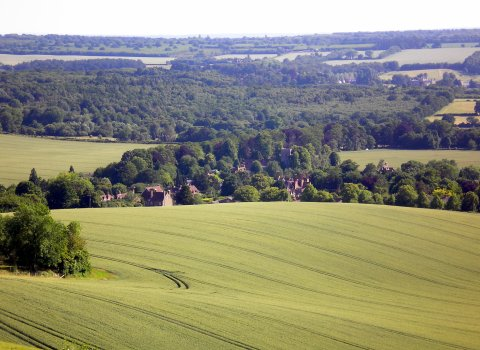 Hollingbourne View