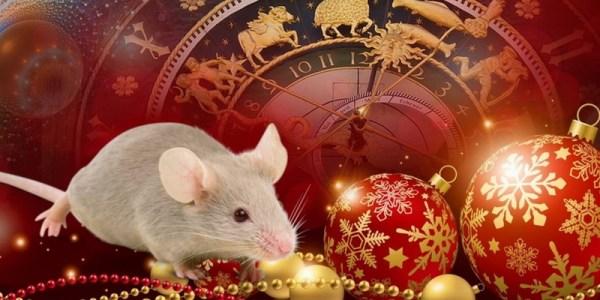 Лучшие новогодние стихи в год Крысы » Крыса пусть не всем ...
