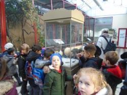 Y1 zoo (6)