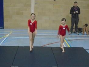 Gymnastics (17)