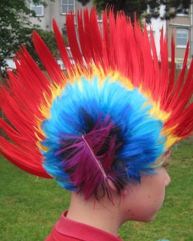 Crazy hair (9)