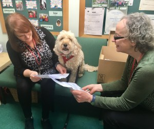 Dog Blog – Holly Park Primary School
