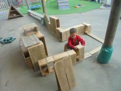 Nursery settling (14)