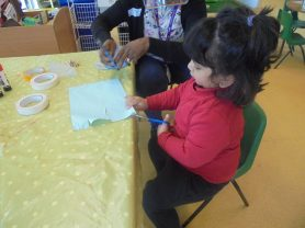 Nursery settling (15)
