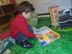 Nursery settling (7)