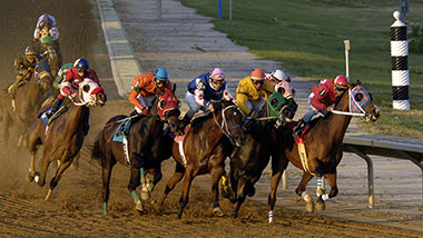 Live Horse Racing | Hollywood Casino at Charles Town Races