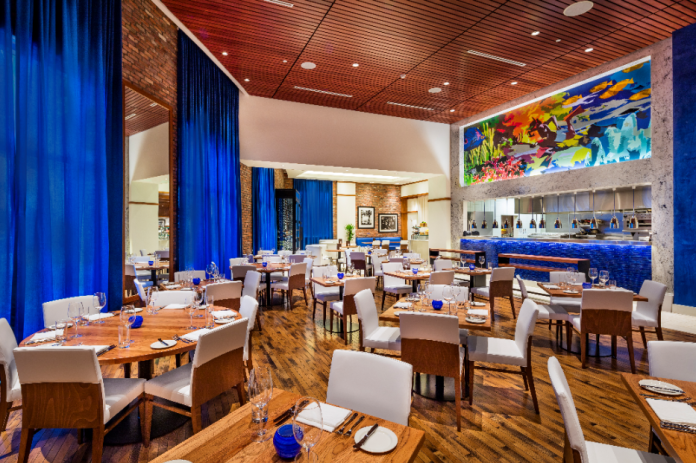 Margaritaville hollywood beach resort expands food and beverage team with key hires
