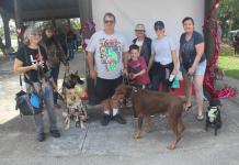 These are some of the participants in the Be Mine Dog Show. There were many categories for dogs to win and people enjoyed spending time with fellow dog owners at the Hollywoof Dog Park.