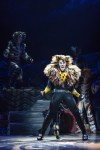 <em>Cats</em> The Movie Will Not Work - Why The Jellicle Ball Is Best Danced On Stage Instead Of The Screen