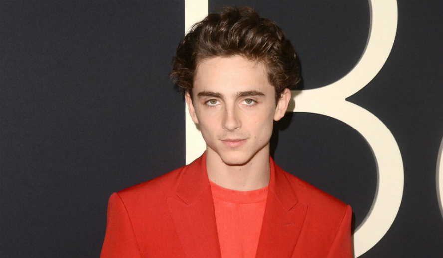Timothée Chalamet Beautiful Boy