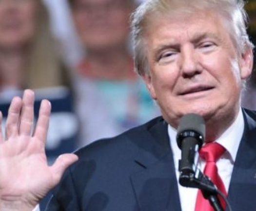 trump-celebrity-