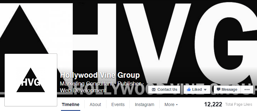 Hollywood-Vine-Group
