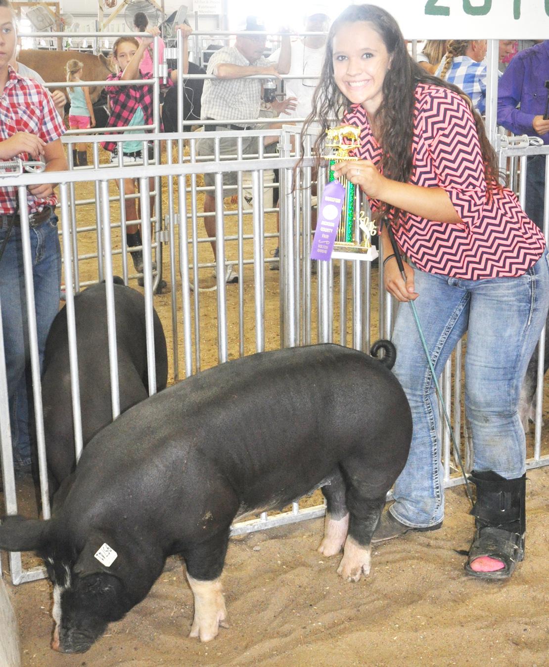 4 H Swine Show