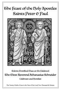 schneider-mass