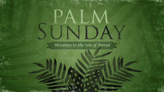palm-sunday_wide_t_nv