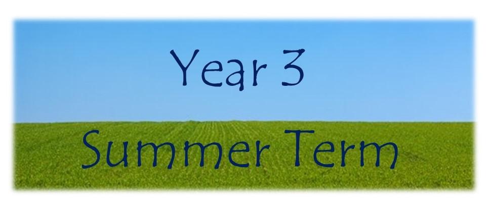 Year-3-Summer-Banner-2
