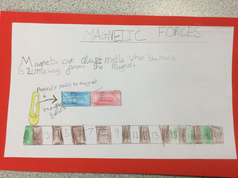 Magnetic Forces (5)