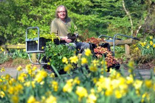 Billy Carruthers, of Binny Plants, with some of the 1000-plus plants he is transporting to the Inchmarlo estate to create a new rainbow feature in the world-renowned Deeside gardens