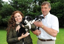 PR photography of sheepdog puppies for wind farm company