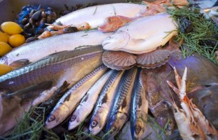 Seafood counter