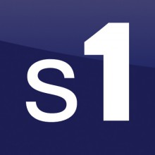 s1 group logo