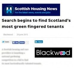 Scottish Housing News, cutting