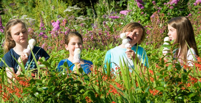 Children enjoying Mackie's ice cream   Consumer PR