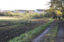 Beggar's Bush, Ravensheugh, Musselburgh 021112 004