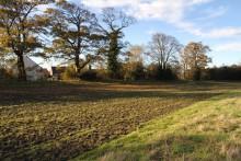 Beggar's Bush, Ravensheugh, Musselburgh 021112 009