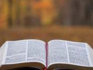Bible pic 1