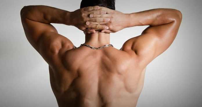 Una espalda en forma de V