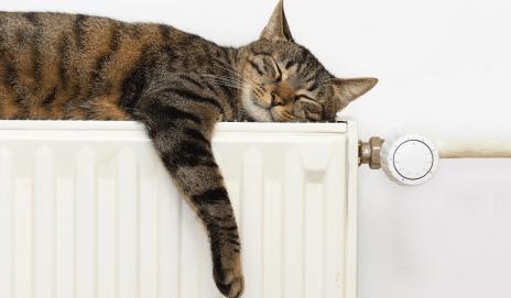 Cinco falsos mitos sobre la calefacción