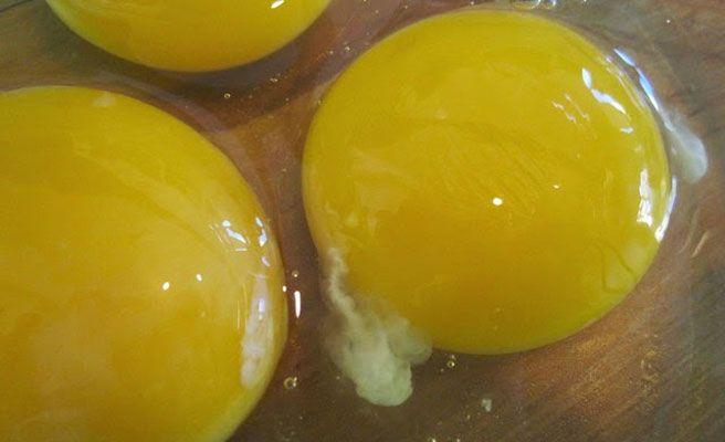 El hilo blanco del huevo
